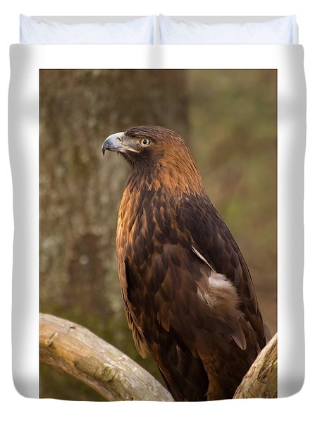 Duvet Cover featuring the photograph Golden Eagle Resting On A Branch by Chris Flees