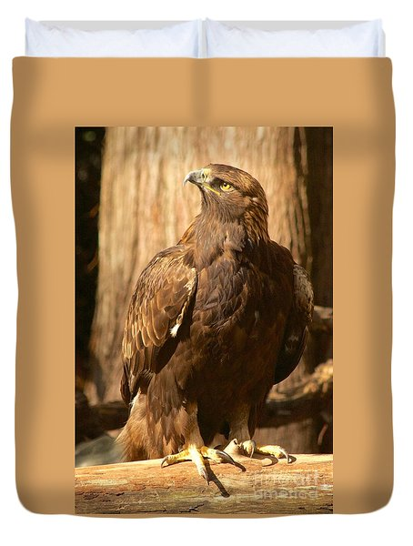 Golden Eagle Duvet Cover by Sean Griffin