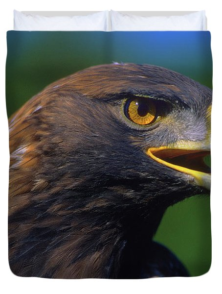 Golden Eagle Duvet Cover by Tony Beck