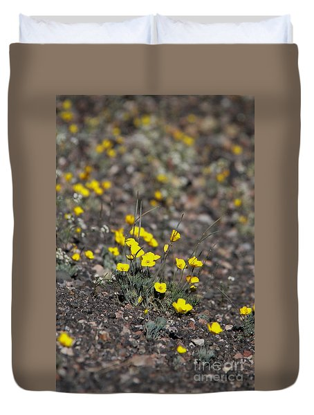 Duvet Cover featuring the photograph Golden Poppy by Suzanne Oesterling