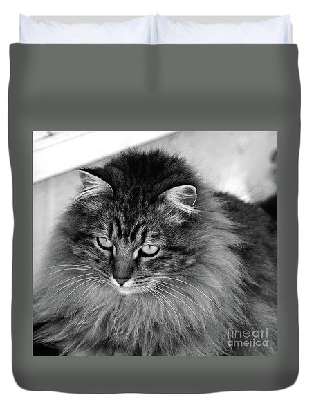 Golden Eyes Two Duvet Cover