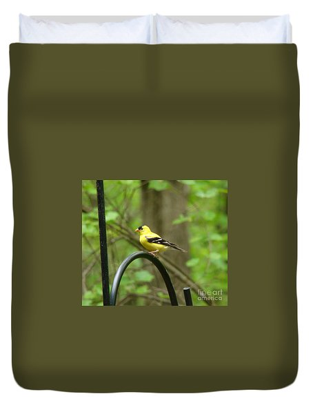 Duvet Cover featuring the photograph Golden Finch by Rand Herron