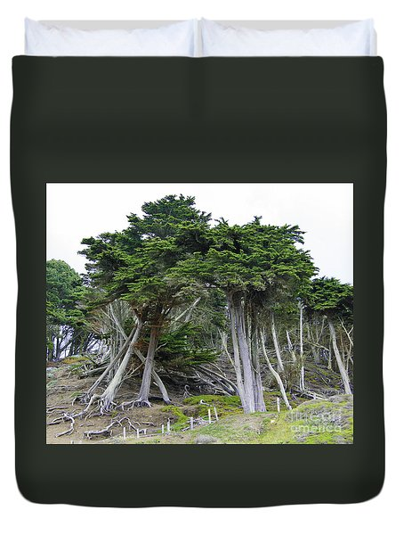 Golden Gate Sentinels Duvet Cover