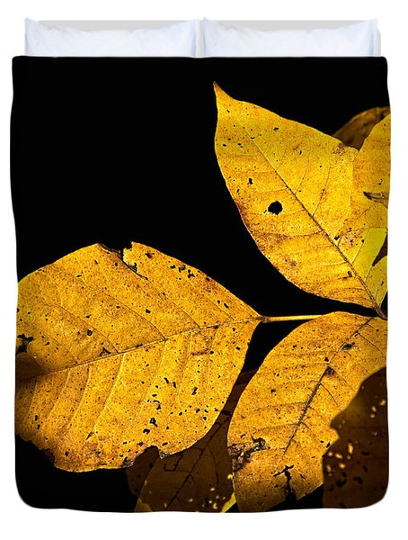Golden Glow Duvet Cover by Christopher Holmes