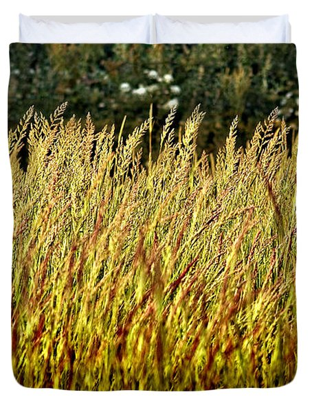 Golden Grasses Duvet Cover by Meirion Matthias