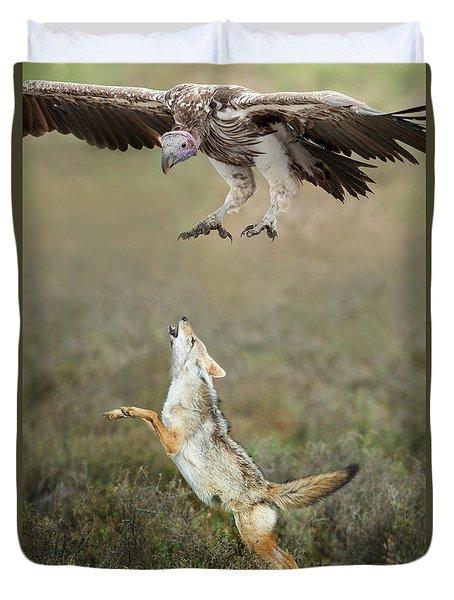 Golden Jackal, Canis Aureus, Leaping At Vulture Duvet Cover