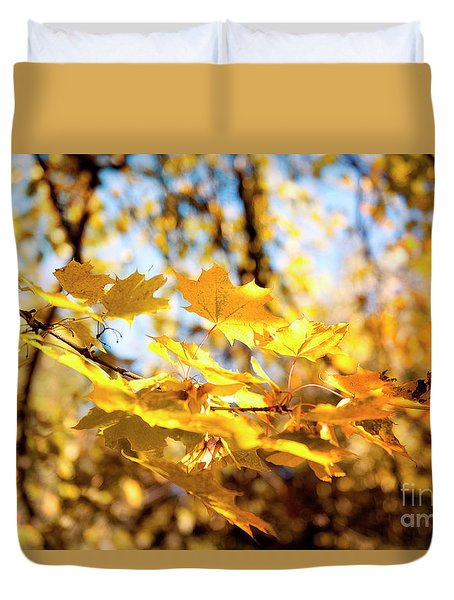 Duvet Cover featuring the photograph Golden Leaves by Ivy Ho