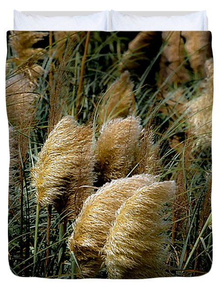 Golden Pampas In The Wind Duvet Cover