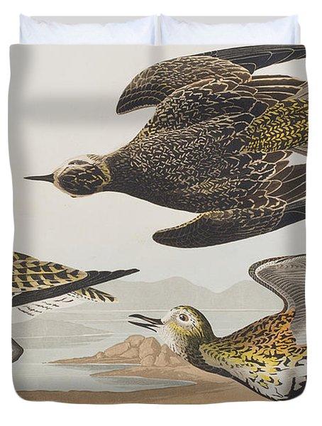 Golden Plover Duvet Cover