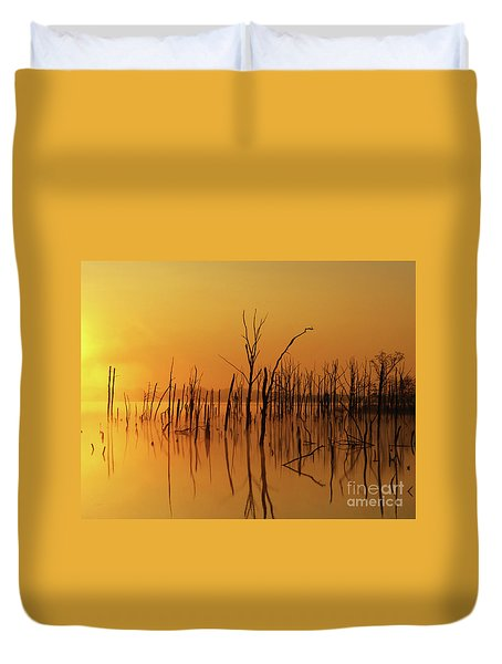 Golden Reflections Duvet Cover by Roger Becker