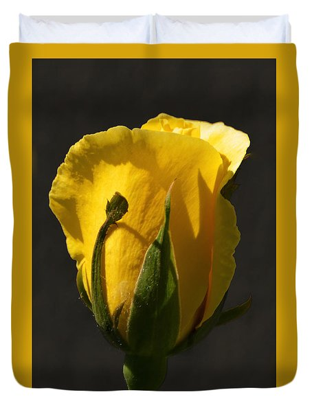Duvet Cover featuring the photograph Golden Rose by Kathleen Stephens