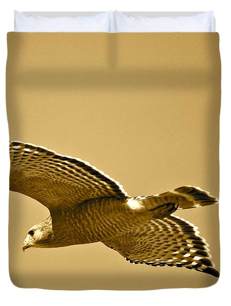 Golden Sunlight On Hawk Duvet Cover by Carol Groenen