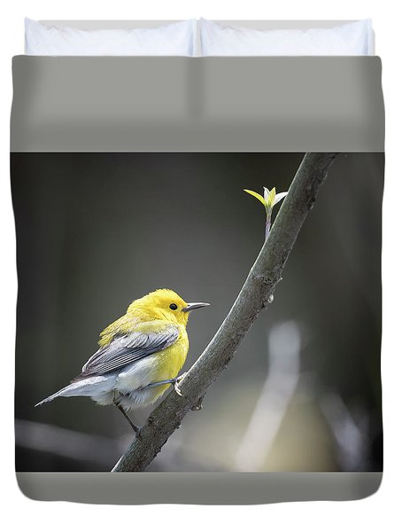Golden Swamp Warbler Duvet Cover by Gary Hall