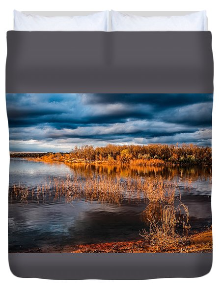 Golden Tones Duvet Cover by Doug Long