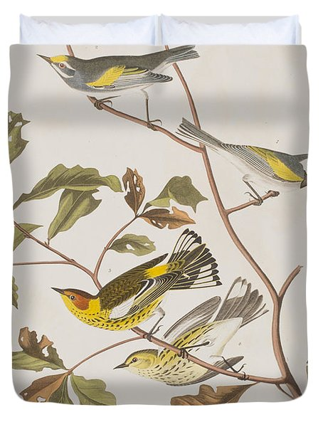 Golden Winged Warbler Or Cape May Warbler Duvet Cover