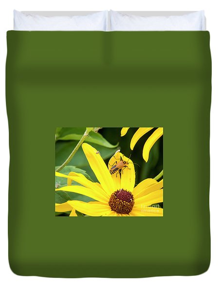 Duvet Cover featuring the photograph Goldenrod Soldier Beetle by Ricky L Jones