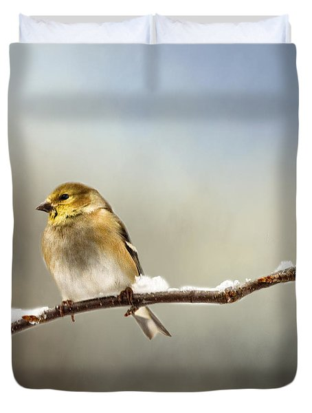 Goldfinch After A Spring Snow Storm Duvet Cover
