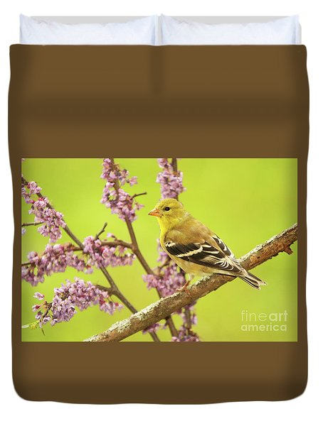 Goldfinch Among Redbud Duvet Cover