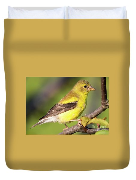 Duvet Cover featuring the photograph Goldfinch In The Early Morning  by Ricky L Jones