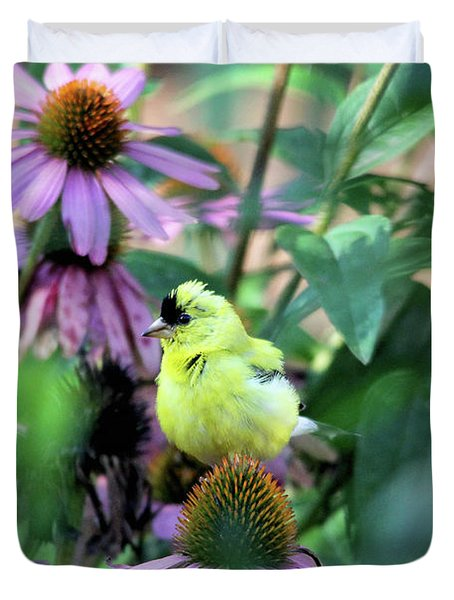 Goldfinch On Coneflowers Duvet Cover