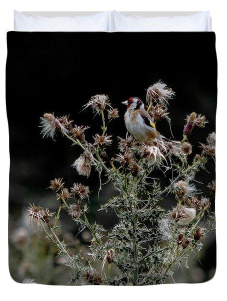 Goldfinch Sitting On A Thistle Duvet Cover