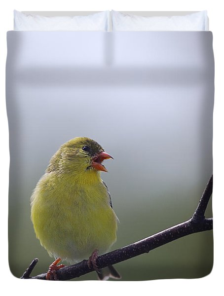 Duvet Cover featuring the photograph Goldfinch Song by Susan Capuano