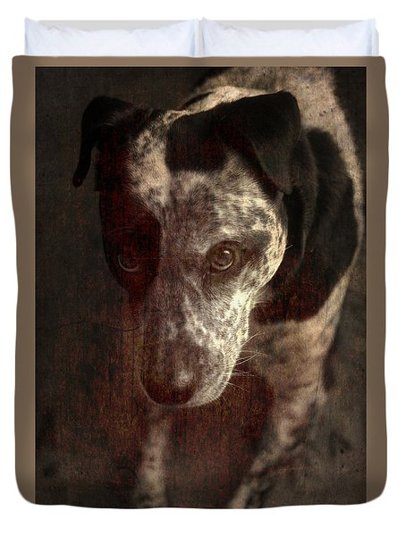 Mans Best Friend Sepia I Duvet Cover by Suzanne Powers