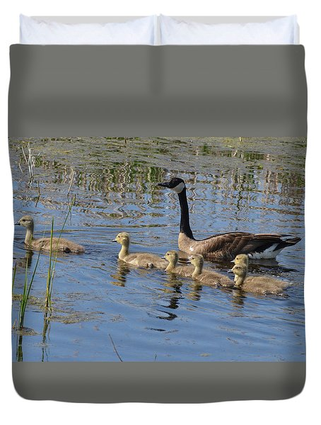 Goose And Goslings No.1867 Duvet Cover