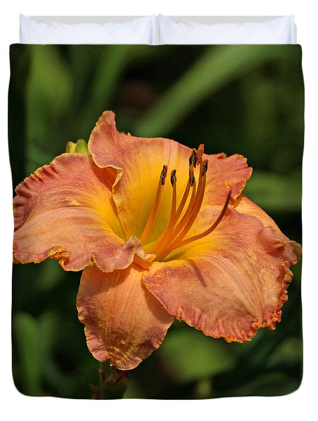 Gorgeous Daylily Duvet Cover