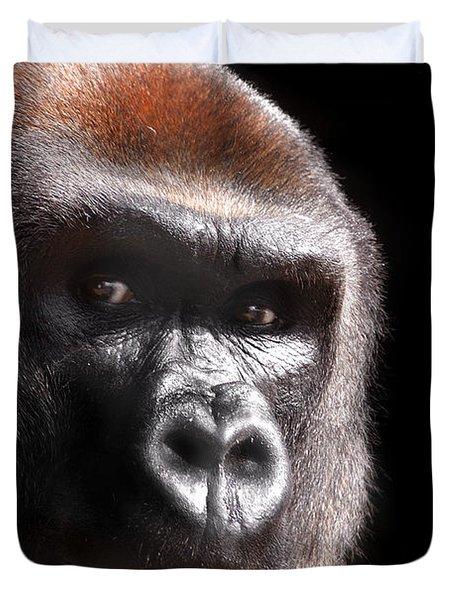 Gorilla ... Kouillou Duvet Cover by Stephie Butler