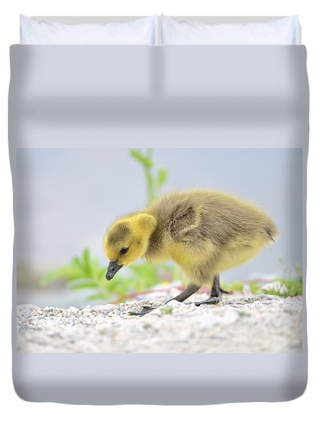 Gosling Duvet Cover by Kathy King