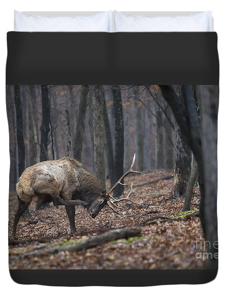 Duvet Cover featuring the photograph Got A Scratch by Andrea Silies