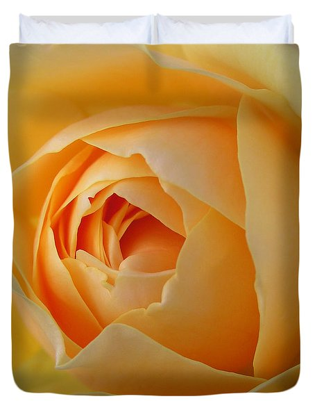 Duvet Cover featuring the photograph Graham Thomas Old Fashioned Rose by Jocelyn Friis