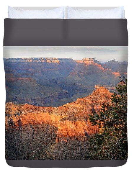 Grand Canyon South Rim - Red Berry Bush Along Path Duvet Cover