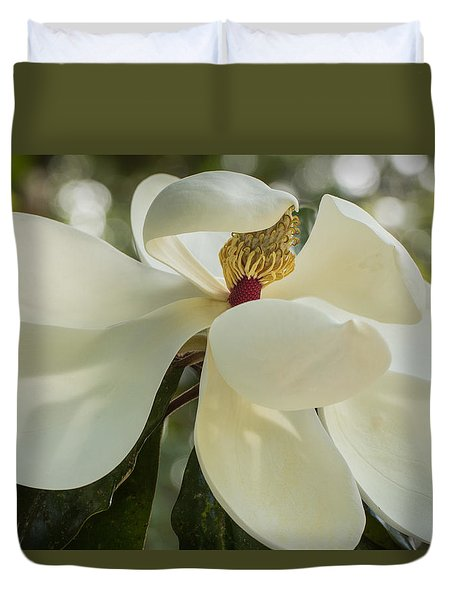 Duvet Cover featuring the photograph Grand Magnolia  by Julie Andel