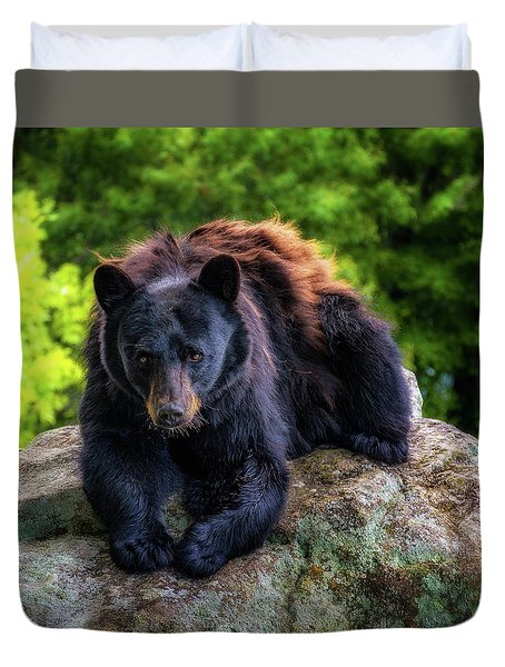 Grandfather Mountain Black Bear Duvet Cover