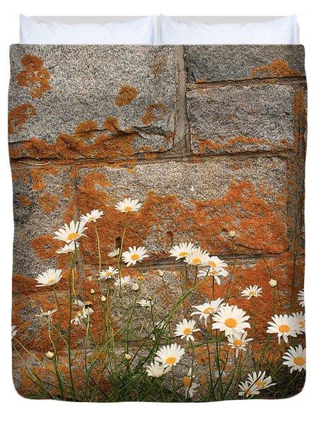Granite Daisies Duvet Cover
