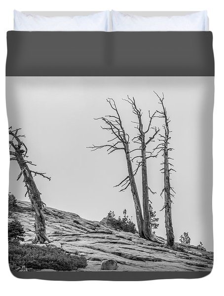 Granite Staitcase Duvet Cover