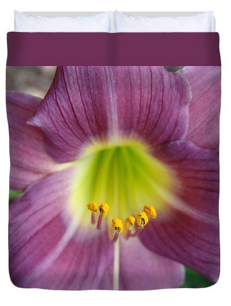 Grape Purple Daylilies  Duvet Cover by Rebecca Overton