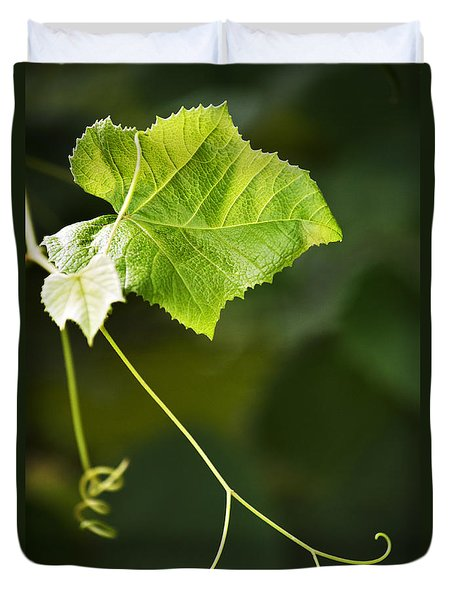 Grape Vine Duvet Cover by Christina Rollo
