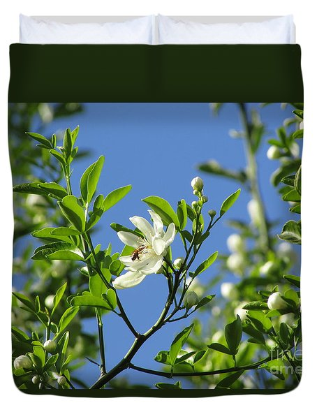 Grapefruit Blooms 242 Duvet Cover
