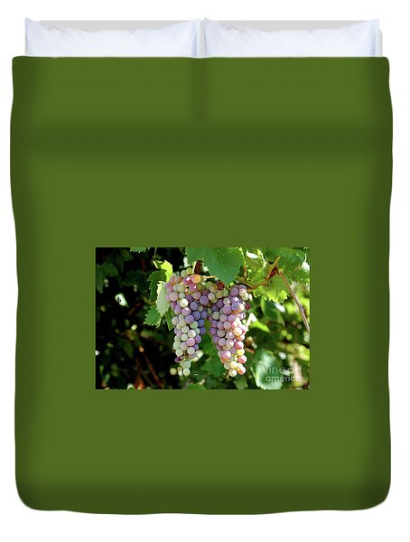 Grapes In Color  Duvet Cover