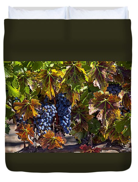 Grapes Of The Napa Valley Duvet Cover by Garry Gay