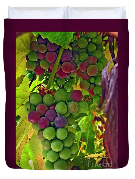 Duvet Cover featuring the photograph Grapes On The Vine by Chris Anderson