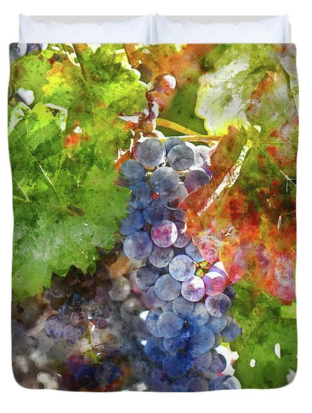 Grapes On The Vine In The Autumn Season Duvet Cover