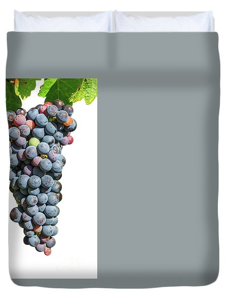 Grapes On Vine Duvet Cover