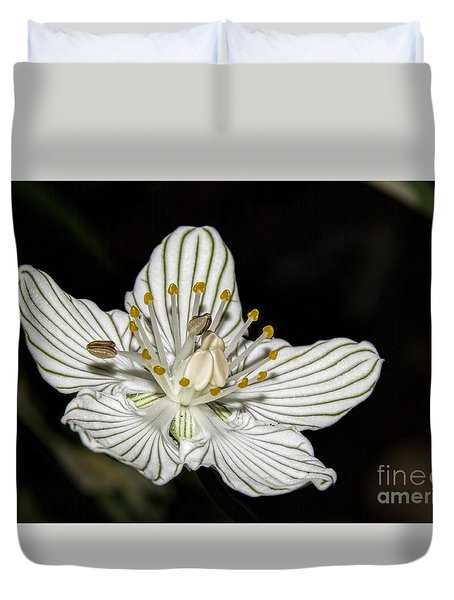 Duvet Cover featuring the photograph Grass Of Parnassus by Barbara Bowen