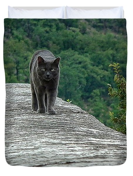 Gray Cat Prowling Duvet Cover