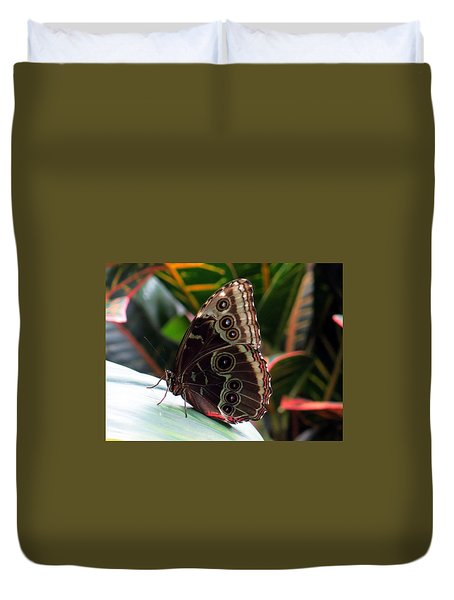 Gray Cracker Butterfly Duvet Cover