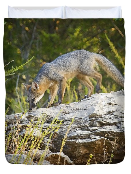 Gray Fox Hunting The Bluff Duvet Cover